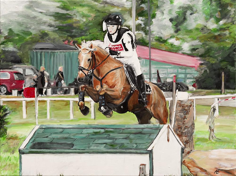 Pferd Sport
